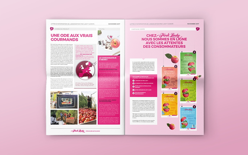 <strong>LETTRE INFO - PINK LADY </strong><br>